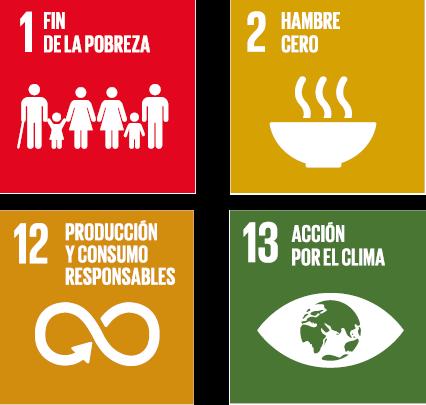 Estas normas facilitan a las organizaciones la consecución de los Objetivos de Desarrollo  ...