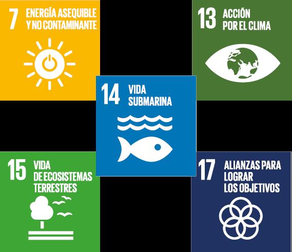 Las normas UNE sobre cambio climático contribuyen al cumplimiento de los Objetivos de Desarrollo  ...