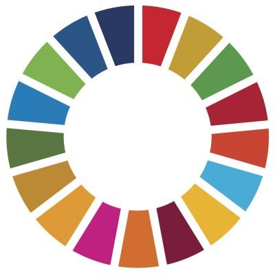 Estándares, la llave de los ODS